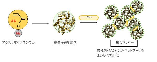 図1 ゲル形成のメカニズム.jpg