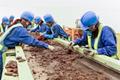 災害廃棄物の迅速に処理、99.8%をリサイクル<p>広島市災害廃棄物処理業務</p>