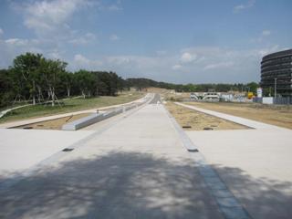 東北大学(青葉山3)基幹・環境整備(敷地造成・道路・排水・共同溝等)工事